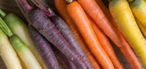 colorful carrots 300x143 - Growing Carrots in Your Garden