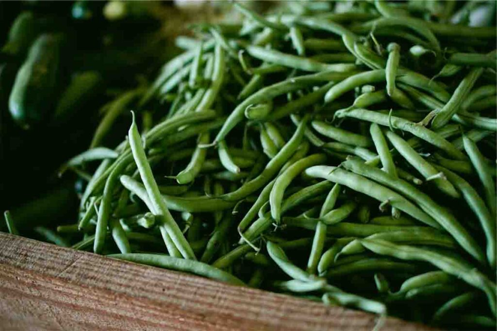 how-to-grow-green-beans-guide