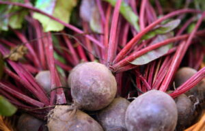 beets gates mills 070710jpg c3011abec4e475cb 300x192 - Plant These 15 Delicious Vegetables That Can Grow Without Full Sun