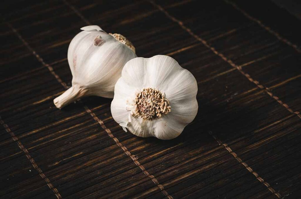 garlic-vegetable-that-can-grow-in-shade
