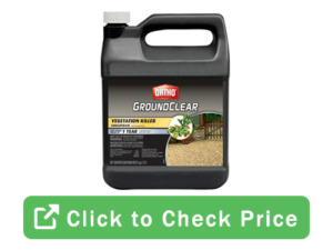groundclear click 300x225 - Strong Weed Killer Options To Choose From