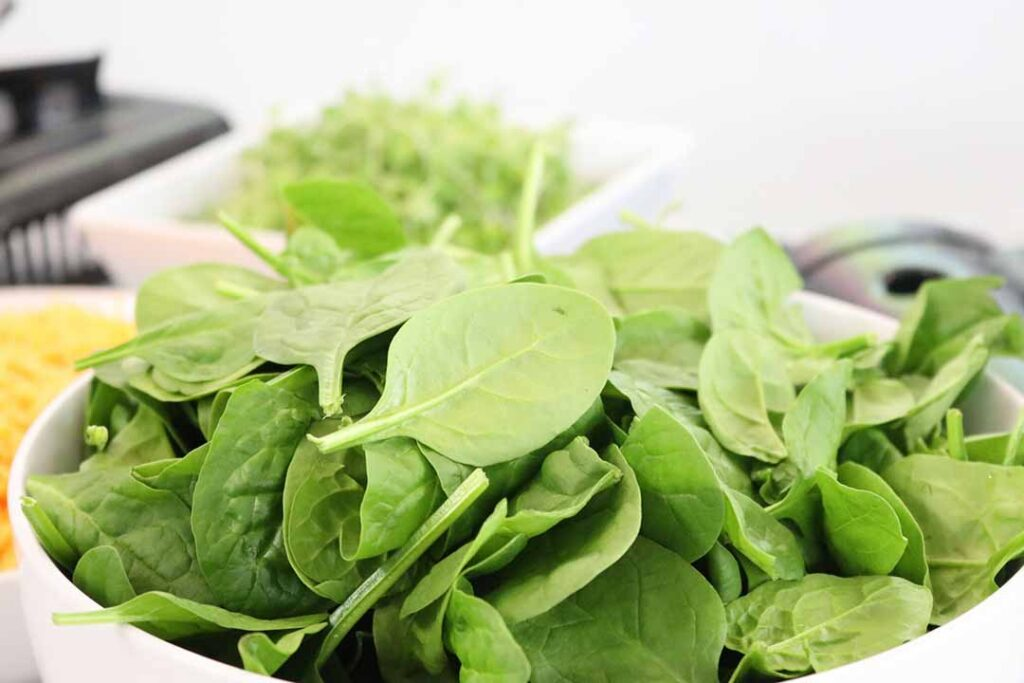spinach-vegetable-that-can-grow-in-shade