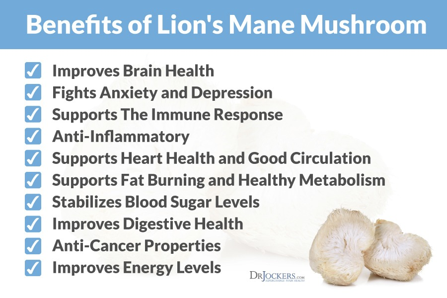 lionsmanemushroom benefits - How To Grow Lion's Mane Mushroom