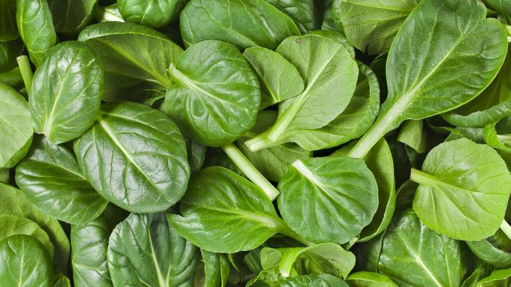 spinach leaves - 14 Fruits And Vegetables To Grow For Your Small Garden