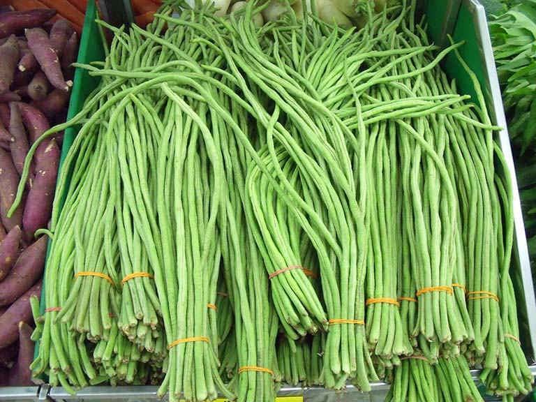 string beans - 14 Fruits And Vegetables To Grow For Your Small Garden