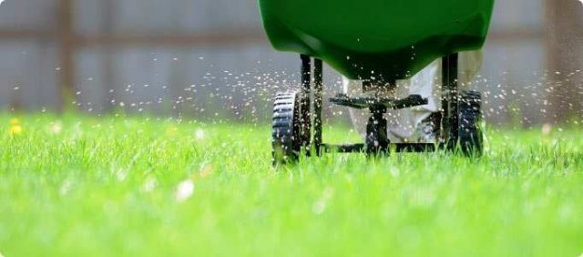 Fertilizing Your Lawn 640x282 - When To Fertilize New Sod To Promote Proper Growth