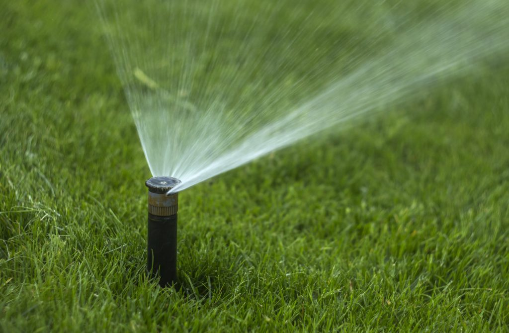 watering new sod - When To Fertilize New Sod To Promote Proper Growth